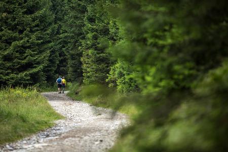Les randonneurs - en passant par un beau sentier forestier alpin Banque d'images