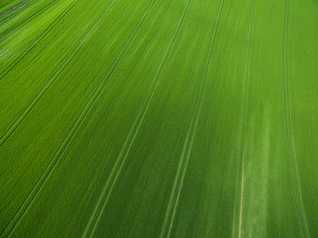 Farmland from above - aerial image of a lush green filed Lizenzfreie Bilder