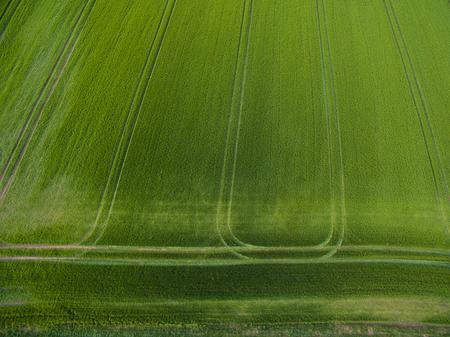 上からの農地-緑豊かな緑の空中画像 写真素材