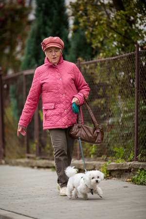 Senior woman walking her little dog on a city street; looking happy and relaxed