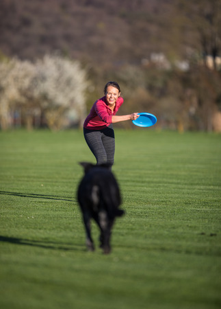 Portrait of a black dog running fast outdoors, playing with frisbee  (shallow DOF, sharp focus Banco de Imagens - 115347575