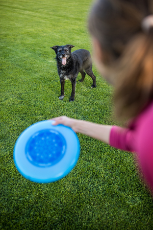 Young woman throwing freisbee to her black dog outdoors (shallow DOF, sharp focus Banco de Imagens