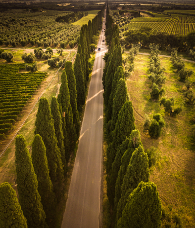Cypress alley with rural country road, Tuscany, Italy Stock Photo