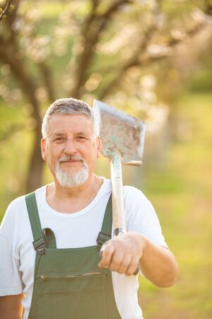 Portrait of a handsome senior man gardening in his garden, on a lovely spring day (color toned image) Stockfoto - 128572908