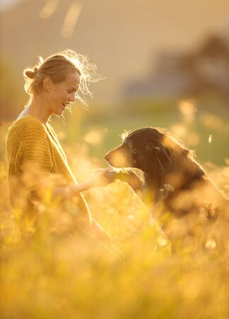 Pretty, young woman with her large black dog on a lovely sunlit meadow in warm evening light, playing together Stock fotó