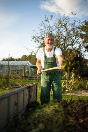 Senior gardener gardening in his permaculture, organic garden