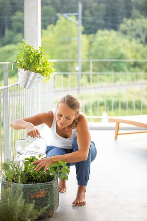 Pretty, young woman watering herbs she is growing on her balcony. Stock Photo