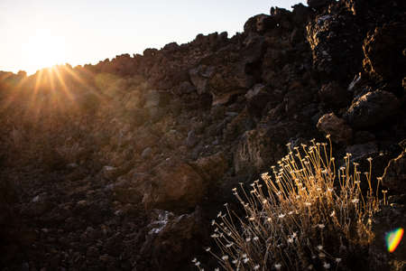 Colorful scenic landscape of moon rise in Tenerife national park of Teide. El Teide with moon rising by its side. Archivio Fotografico