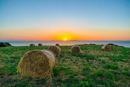 Hay bales at sunset on the Italian coast.These, thanks to the proximity of the sea, bring several mineral salts to the hay, excellent for milk production