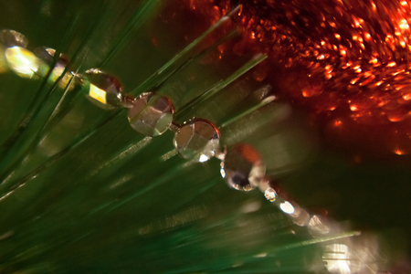 Lights and Christmas toys on the christmas tree with Blurred abstract dark background!
