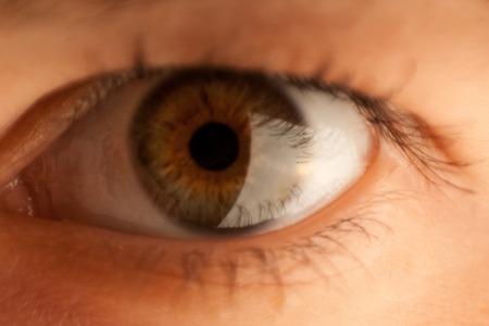 L'œil brun foncé en gros plan de la fille attend avec impatience Banque d'images