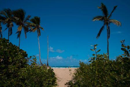 Landscape photo of seaside in the Dominican republic