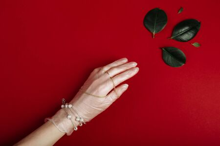 Hand with white medical latex glove with jewellery is reaching for a green leaf. luxury and ecological concept.
