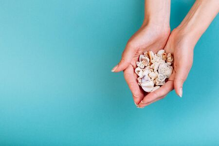 Macro of hand holding different kinds of seashells, corals in front of a blue background, isolated with a caption for text. Vacation concept. Stock Photo