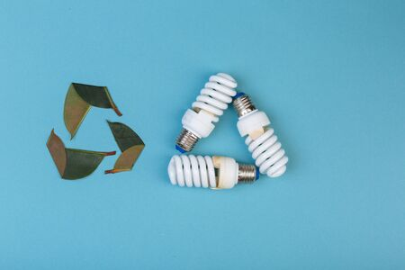 Three leaves of ficus and Three Energy saving lamp in shape eco green energy recycling isolated on the blue, caption for text Banque d'images