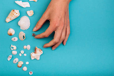 A girls hand takes a tiny small shell.