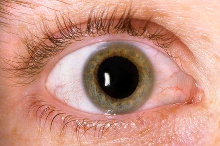 Close-Up of Hazel Eye  photo