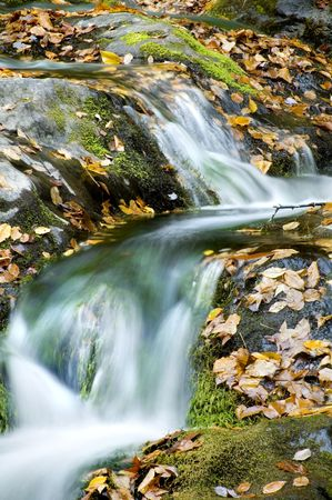 Autumn Waterfall with leaves and mossy rocks photo