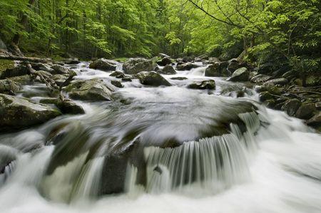 riek: Midden pinnen Little River bevindt in Great Smoky Mountains nationaal park, rand van North Carolina en Tennessee