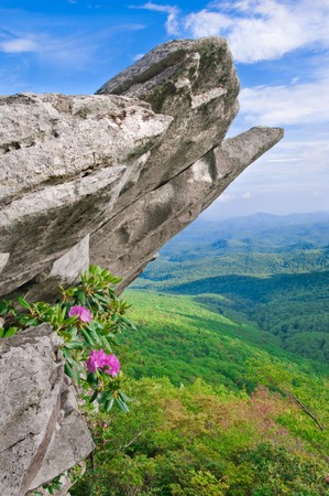 Beautiful view from the Blue Ridge Parkway showing the native Catawba Rhododendron in full bloom on a rocky outcropping. Stock Photo
