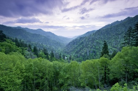 Beautiful sunset view of the Smoky Mountains photo