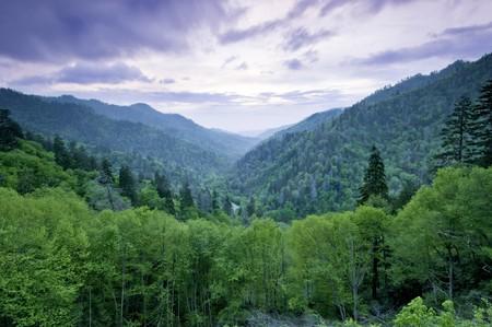 ridges: Bellissima vista tramonto il Smoky Mountains