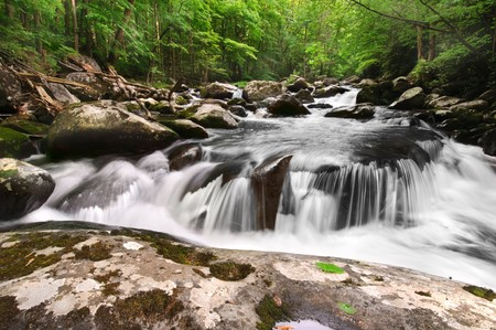Beautiful waterfall in Great Smoky Mountains National Park, on the border of North Carolina and Tennessee photo