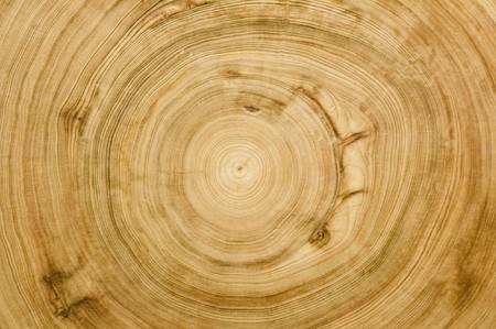 opbouwzuil textuur van een 700-jarige cypress tree