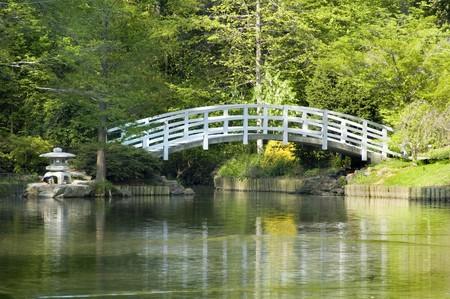 ponte giapponese: Giardino Zen giapponese con ponte di luna Arched e pagoda