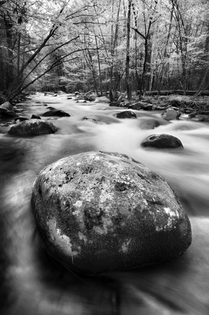 Little River, Great Smoky Mountains National Park Stock Photo