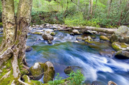 great smokies: beautiful smoky mountain river, long exposure