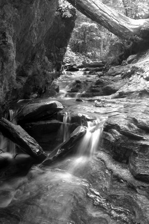 Beautiful Black and White waterfall,  Great Smoky Mountains National Park photo