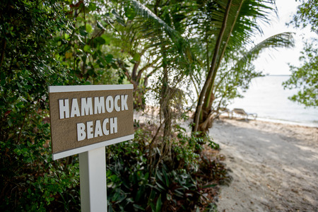 Sign post displaying the text Hammock Beach, set in a wooded area with a sandy beach and shoreline in the background Stock Photo