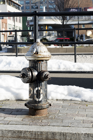Black, New York roadside fire hydrant with a silver top, showing signs of agerust. Portrait orientation.