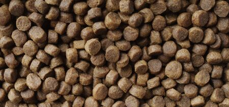 Dry food for cats and dogs. Panoramic background texture. 版權商用圖片