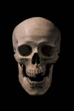 Front view of human skull with mouth open. isolated on black background.