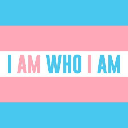 LGBTQ Plus transgender Flag White Blue Pink Lesbian Gay Bisexual and Transgender Pride Vector Template Design Element with modern high end look