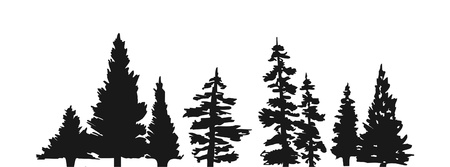 autumn trees: Pine tree silhouette Illustration