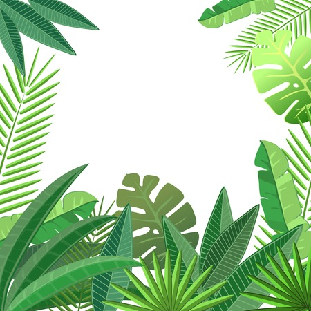 green leafs: Tropical leaves. Floral design background.