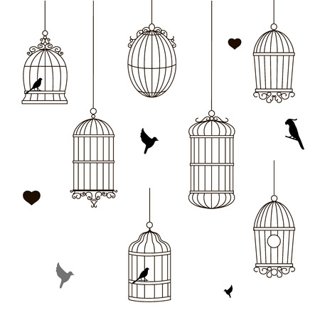 confined: set of different style bird cage