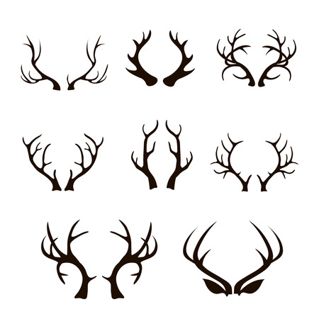 Vector deer antlers silhouette isolated on white. Set of different antlers large, branched and acute
