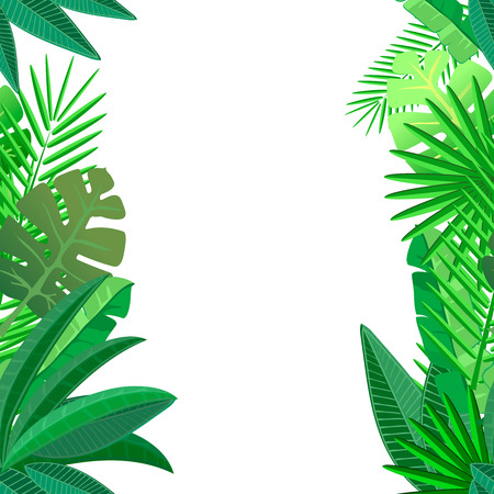 Leaves of tropical palm on white Seamless pattern