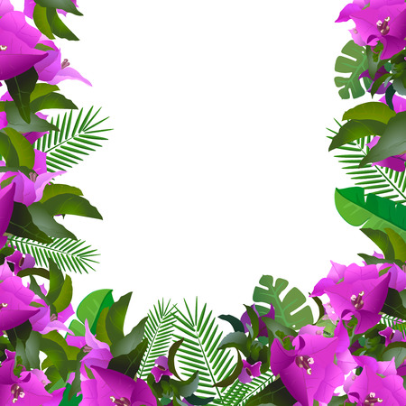 green leafs: Tropical leaves and flowers .  Floral design background.