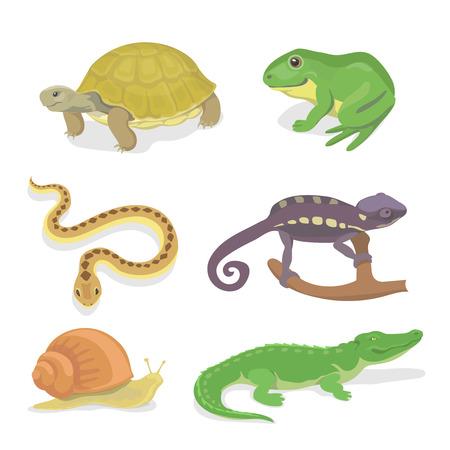 ワニ カメ ヘビ カメレオン アイコン漫画スタイルの分離された図の爬虫類と両生類の装飾セット