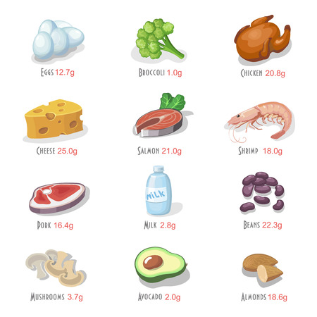 Protein food icons collection for healthy diet with salmon cheese and chicken isolated vector illustrations