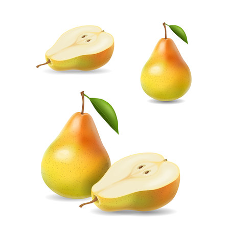 mellow: Sliced yellow pears with leaf vector