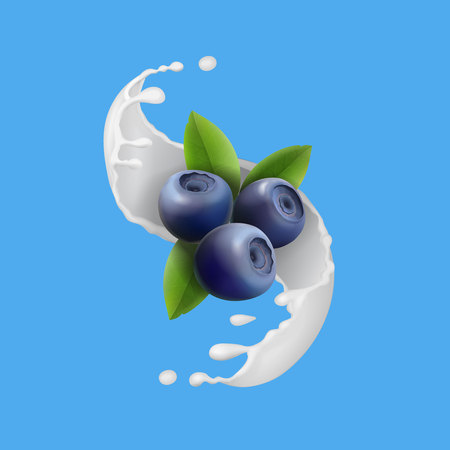 Blueberry and milky splash, berry icon and yogurt . Realistic vector illustration