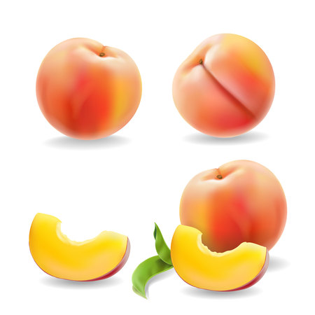 Ripe peach fruit with leaf isolated Realistic vector illustration. Illustration