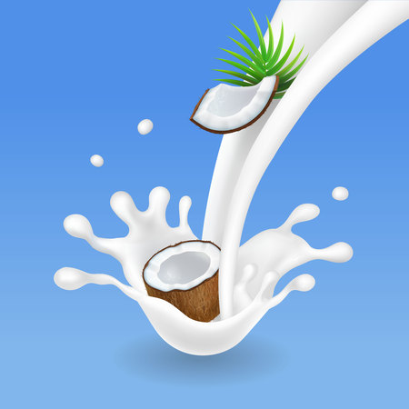 Milk splash and coconut, realistic milkshake. Vector .
