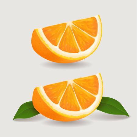 peasant: Fresh orange fruit slice with green leaves. Realistic vector illustration
